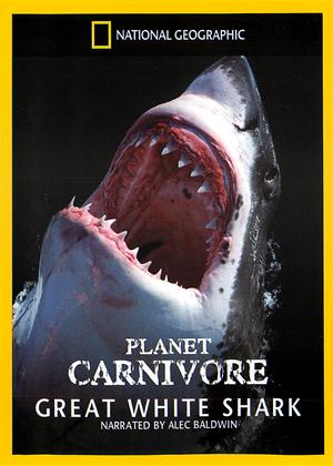 Rent National Geographic: Planet Carnivore - Great White Sharks Online DVD Rental