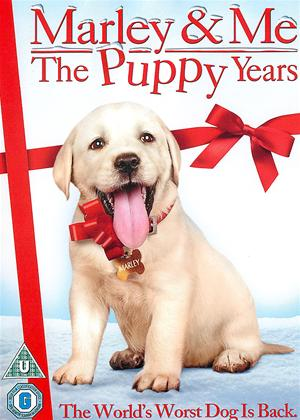 Rent Marley and Me 2: The Puppy Years Online DVD Rental
