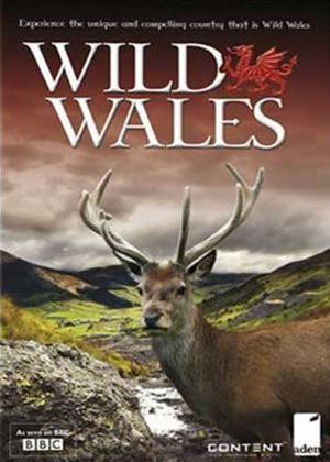 Wild Wales Online DVD Rental