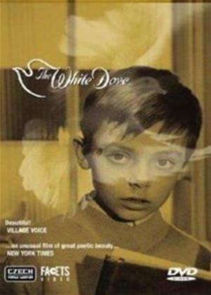 The White Dove Online DVD Rental