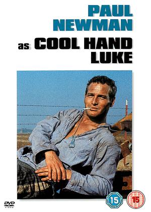 Cool Hand Luke Online DVD Rental