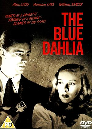 Rent The Blue Dahlia Online DVD Rental