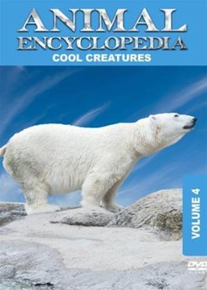 Rent Animal Encyclopedia: Vol.4: Cool Creatures Online DVD Rental