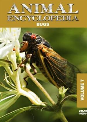Rent Animal Encyclopedia: Vol.7: Bugs Online DVD Rental