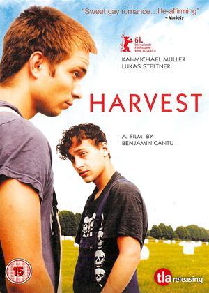 Harvest Online DVD Rental