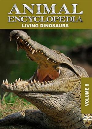 Rent Animal Encyclopedia: Vol.8: Living Dinosaurs Online DVD Rental