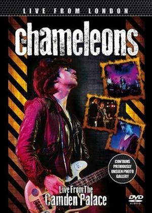 Rent The Chameleons: Live at the Camden Palace Online DVD Rental