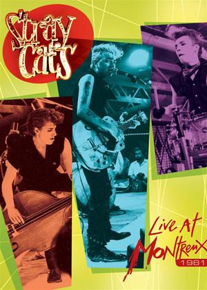 Stray Cats: Live at Montreux 1981 Online DVD Rental