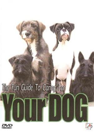 The Fun Guide for Caring for Your Dog Online DVD Rental
