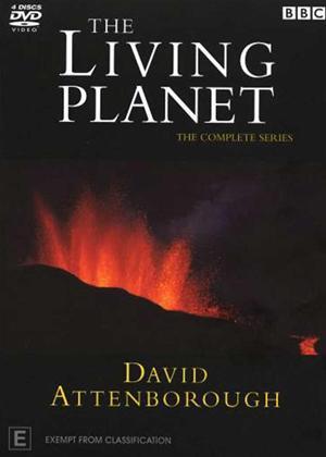 Rent David Attenborough: The Living Planet: Series Online DVD Rental