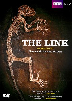 The Link Online DVD Rental