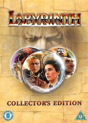 Labyrinth Online DVD Rental