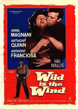 Wild Is the Wind Online DVD Rental