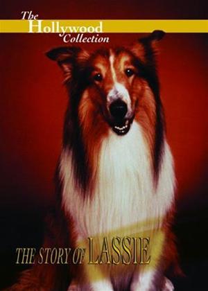 Rent The Story of Lassie Online DVD Rental