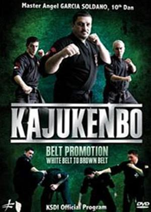 Kajukenbo: White Belt to Brown Belt Online DVD Rental