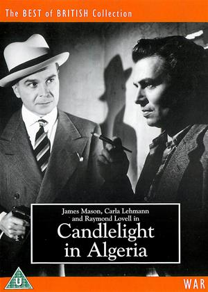 Candlelight in Algeria Online DVD Rental