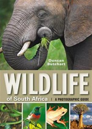 Rent Wildlife: South Africa Online DVD Rental