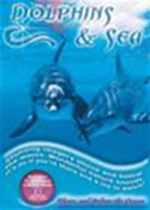 Rent Dolphins and Sea Online DVD Rental