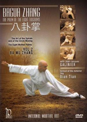 Rent Bagua Zhang: Vol.2 Online DVD Rental