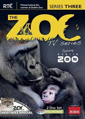 Rent The Zoo: Series 3 Online DVD Rental