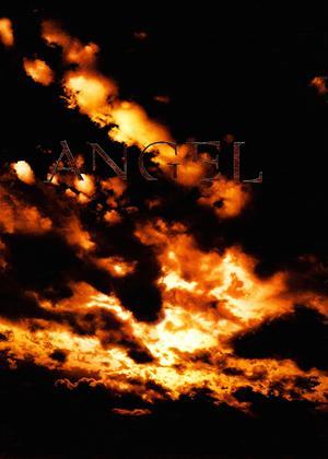 Angel Online DVD Rental