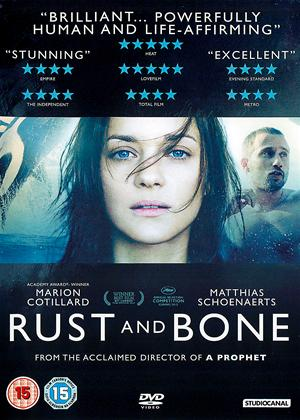 Rust and Bone Online DVD Rental