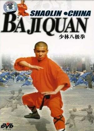 Shaolin China: Baji Quan Online DVD Rental