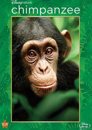 Rent Chimpanzee Online DVD Rental