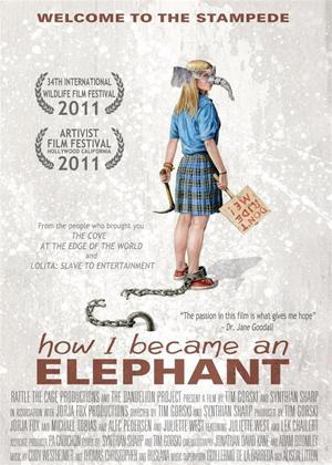 Rent How I Became an Elephant Online DVD Rental