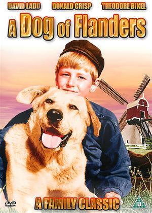 A Dog of Flanders Online DVD Rental