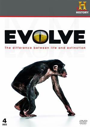 Evolve Online DVD Rental