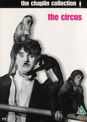 Rent The Circus Online DVD Rental