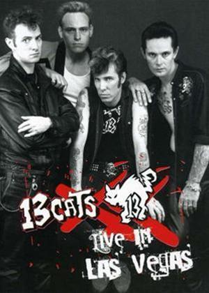 Rent 13 Cats: Live in Las Vegas Online DVD Rental