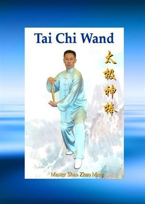 Rent Tai Chi: Wand Ruler Online DVD Rental