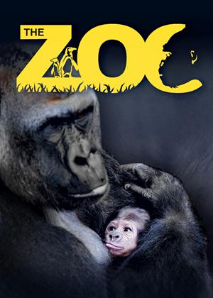 The Zoo Series Online DVD Rental
