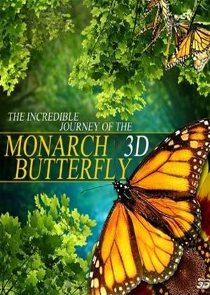Rent Incredible Journey of the Monarch Butterfly Online DVD Rental