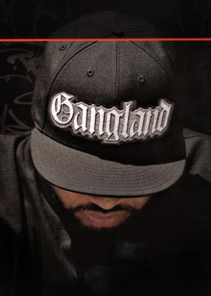Gangland: Series Online DVD Rental