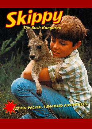 Skippy the Bush Kangaroo Online DVD Rental