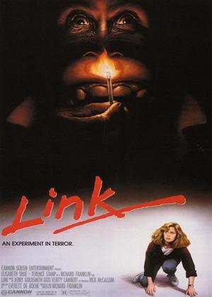 Rent Link Online DVD Rental