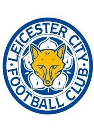 Rent Leicester City: Season Review 2012/2013 Online DVD Rental