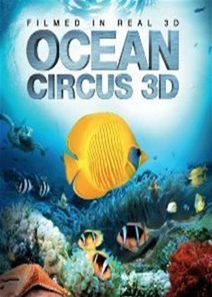 Rent Ocean Circus Online DVD Rental