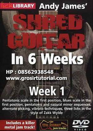 Andy James' Shred Guitar in 6 Weeks: Week 1 Online DVD Rental