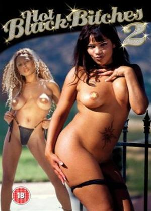 Rent Hot Black Bitches 2 Online DVD Rental