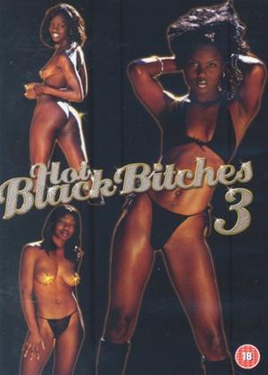 Rent Hot Black Bitches 3 Online DVD Rental