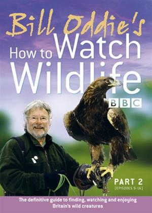 Rent Bill Oddie: How to Watch Wildlife: Part 2 Online DVD Rental
