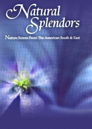 Natural Splendors Online DVD Rental
