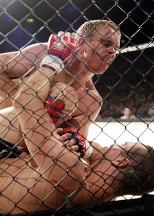 Rent The Best of CFC - Cage Fighting Championship Online DVD Rental