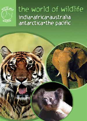 The World of Wildlife Online DVD Rental