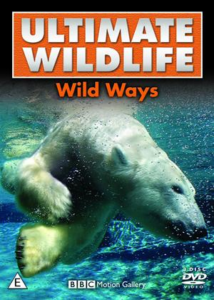 Rent Ultimate Wildlife: Wild Ways Online DVD Rental