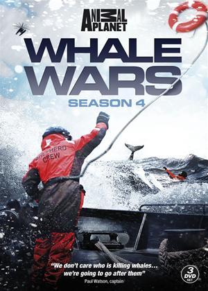 Whale Wars: Series 4 Online DVD Rental